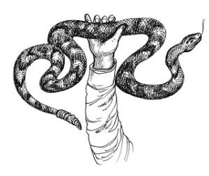 Snake handler web