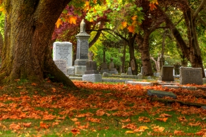 death Ross_Bay_Cemetery_Fall_colors_(1)