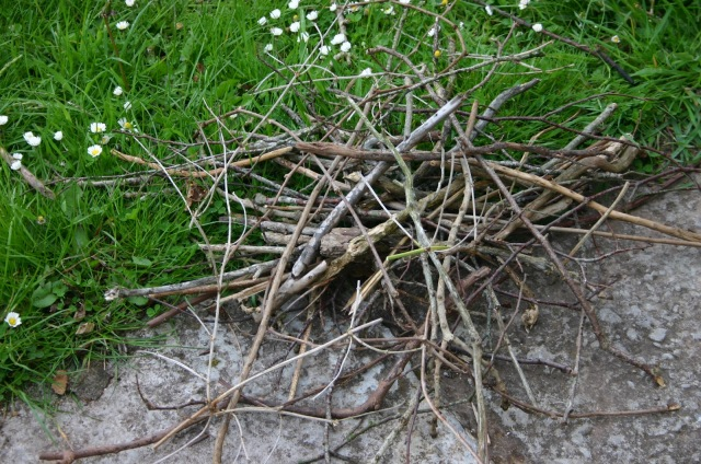 sticks-pile