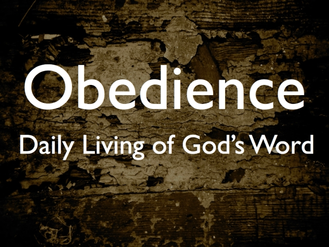 Obedience slide.001