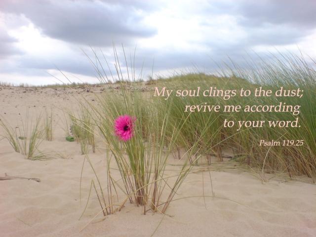 Psalm119_25