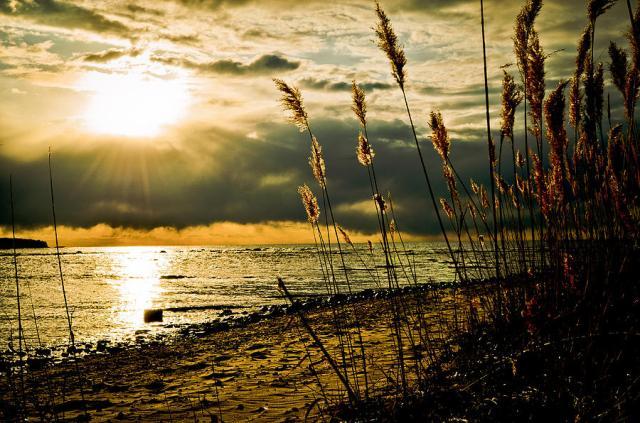 1-new-beginnings-jason-naudi-photography