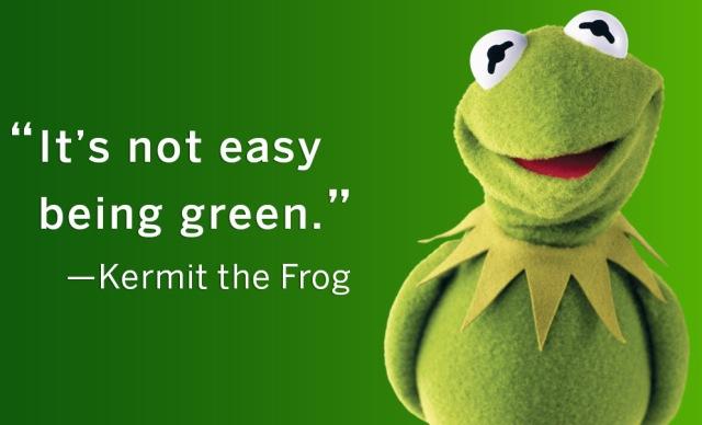 kermitthefrog2