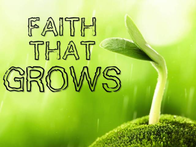 faith that grows