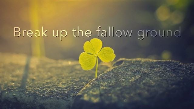 break up fallow ground