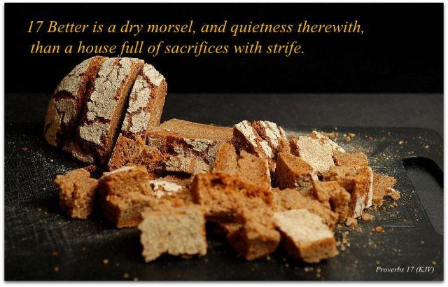 Proverbs 17 (KJV) 17