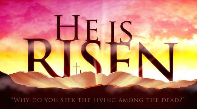 risen why seek