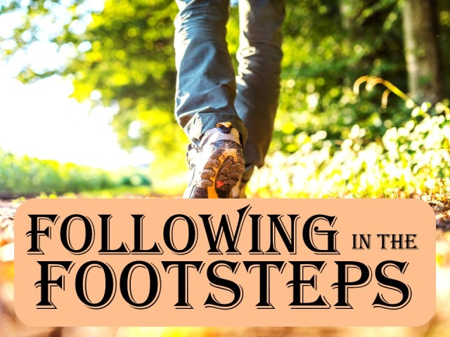 follow in footsteps
