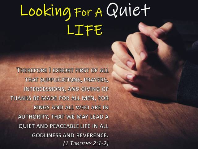 Looking For A Quiet LIFE
