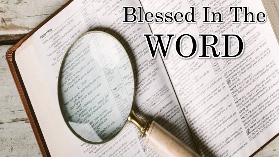 BLESSED IN THE WORD